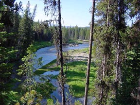 Secesh River at Chinook Campground
